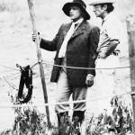 آرتور پن و مارلون براندو در برکههای میزوری