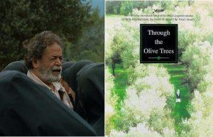 زیر درختان زیتون