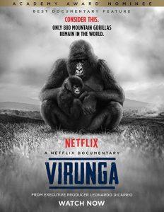 مستند ویرونگا