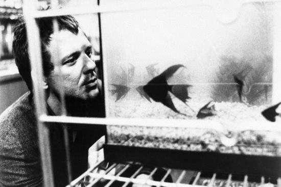 صحنهای از فیلم «ماهی پرجنب و جوش» (فرانسیس فورد کوپولا، 1983)